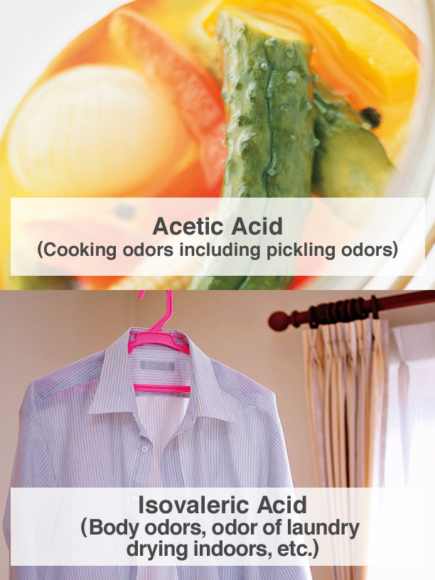 Acetic Acid (Cooking odors including pickling odors), Isovaleric Acid (Body odors, odor of laundry drying indoors, etc.)