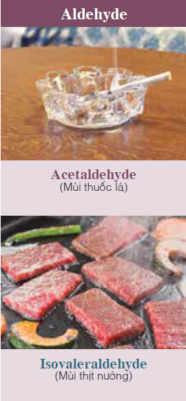 Acetaldehyde (Smell of tobacco, etc.), Isovaleraldehyde (Smell of grilled meat, etc.)