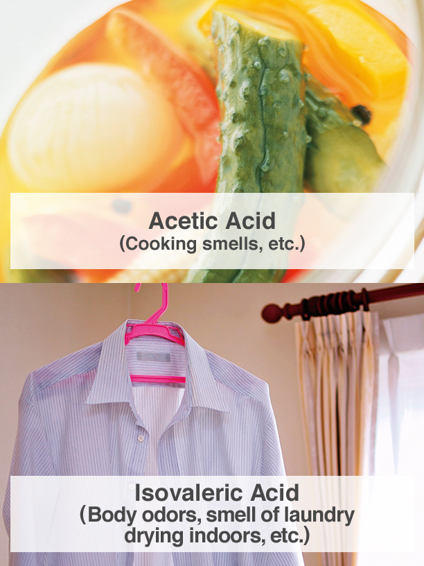 Acetic Acid (Cooking smells, etc.), Isovaleric Acid (Body odors, smell of laundry drying indoors, etc.)
