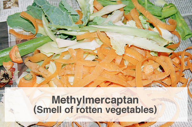 Methylmercaptan (Smell of rotten vegetables)